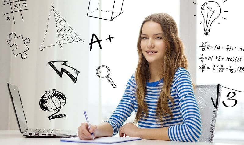 essay company review